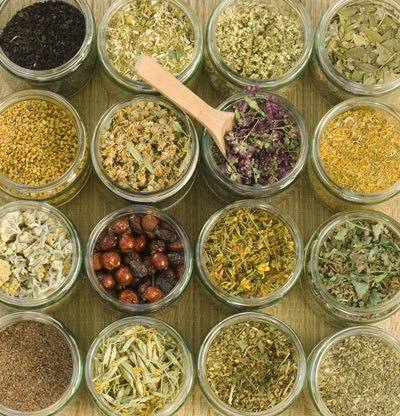 dried herbs, plants, and flowers