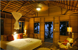 Jungle Bay lodging