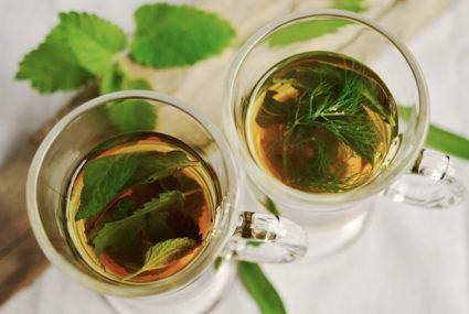 Stinging nettles: It's a tea and a hair treatment