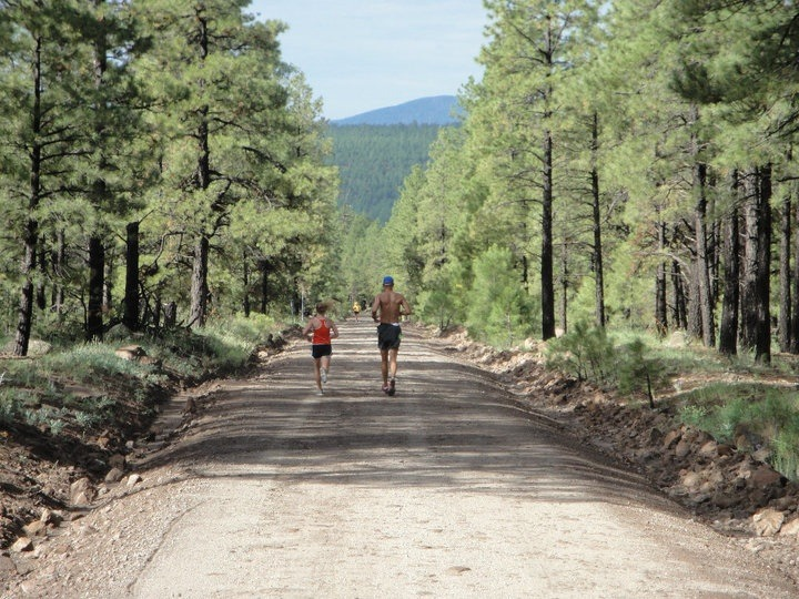 Runners in forest