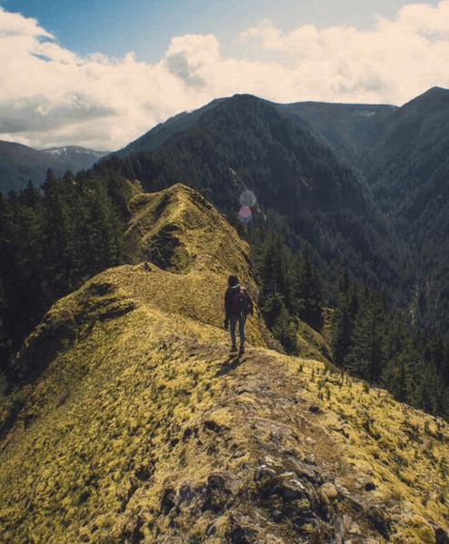healthy reasons to take a hike