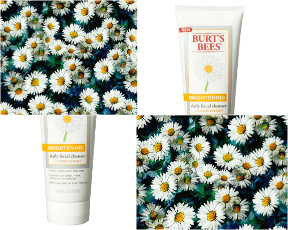 burtsbees-cleanser