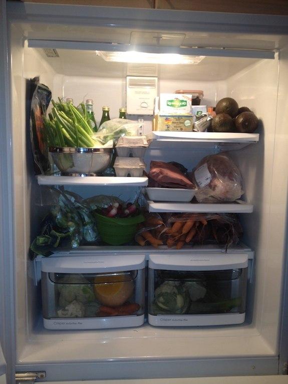 Dave-Asprey-Refrigerator-pic-21.jpg