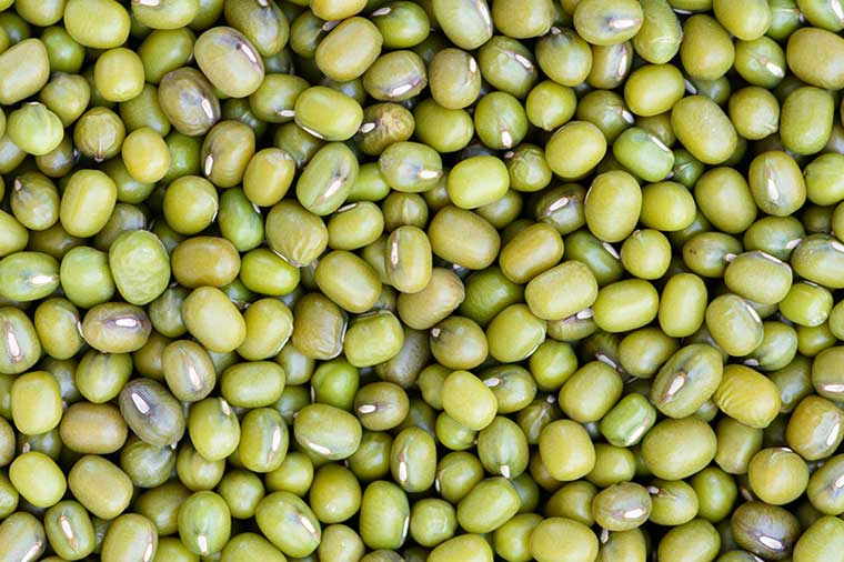 Thumbnail for Why you should probably be eating mung beans