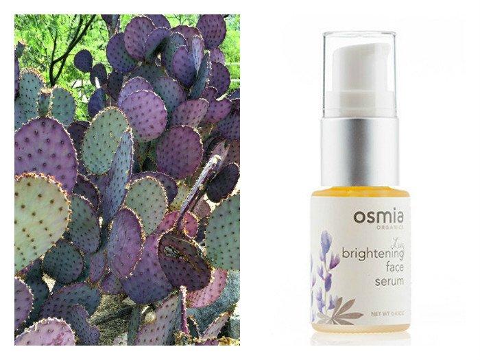Osmia_luz_brightening_facial_serum_prickly_pear