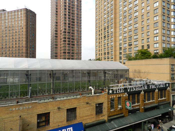 Eli Zabar rooftop farm