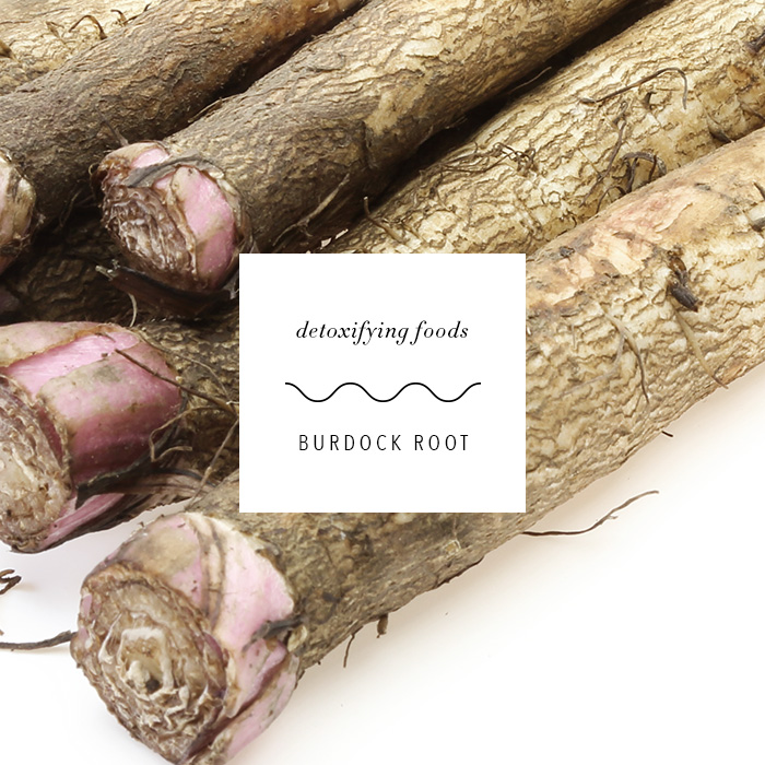 detox-foods_burdock-root