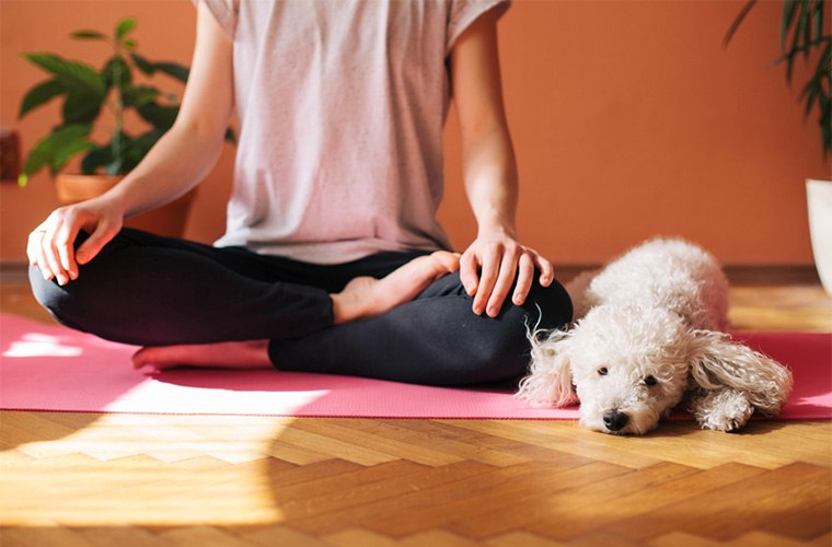 Yoga Practice at home with dog