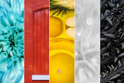 How your favorite colors affect your mood, digestion, and appearance