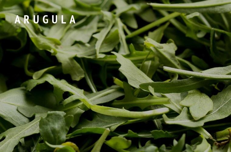 Arugula-Greens-Guide