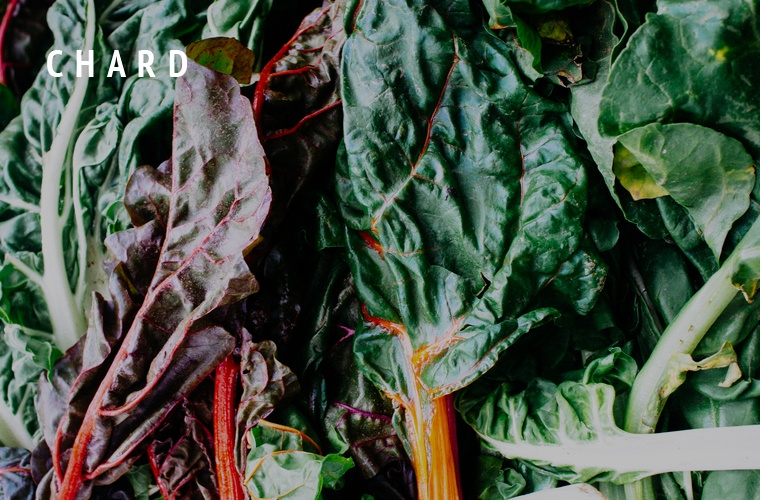 Chard-Greens-Guide