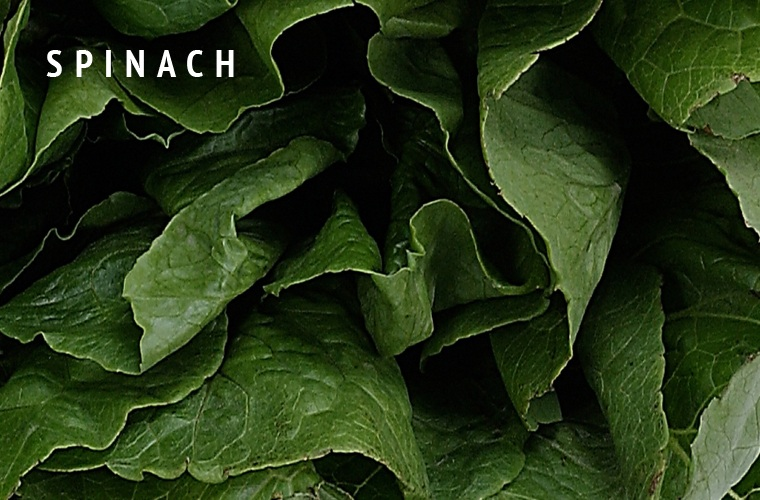 Spinach-Greens-Guide
