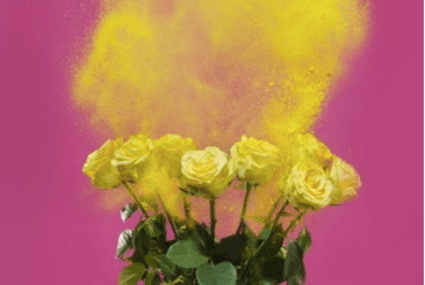 Your allergy horoscope: Was your hay fever written in the stars?