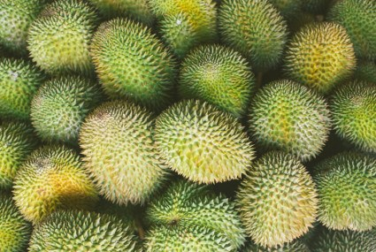 Why jackfruit is the next big thing