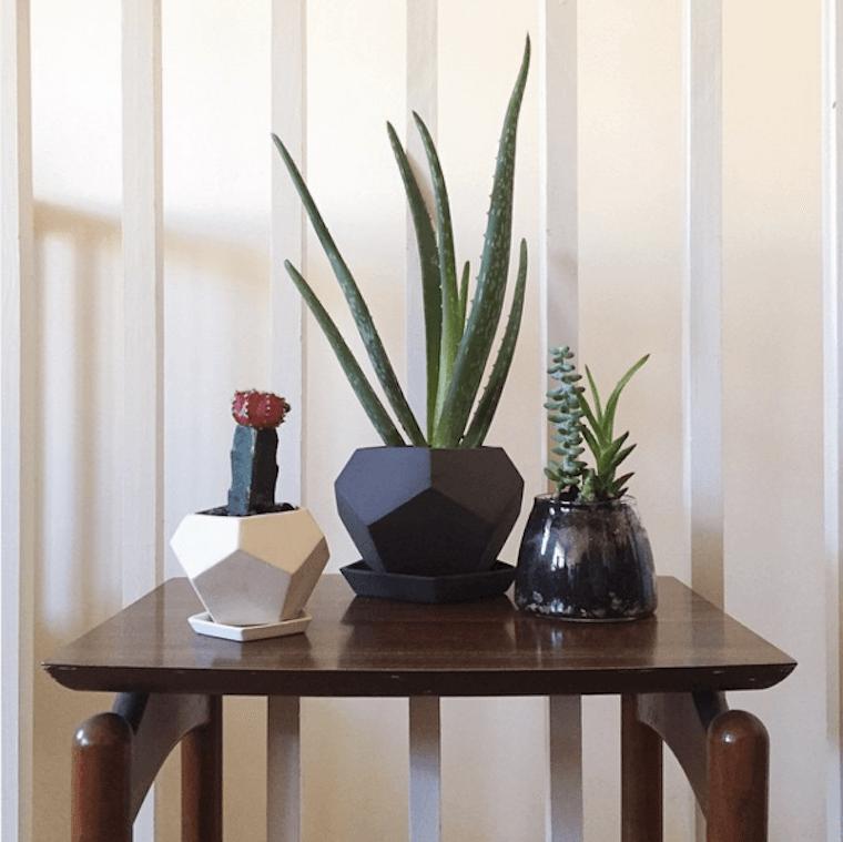 planters-megu-yoshida