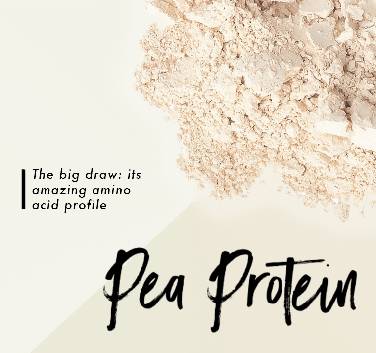 Bolthouse-Pea-Protein-Stat-Updated