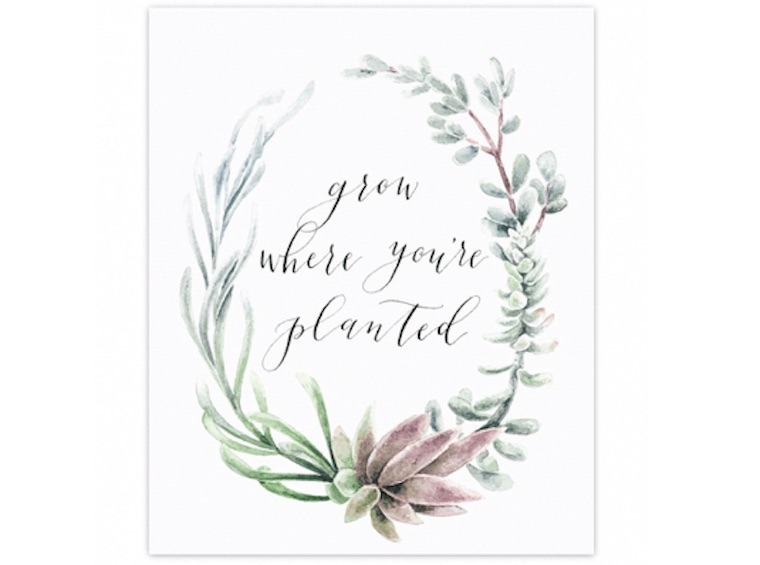grow where you're planted