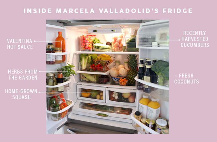 Marcela Valladolid Fridge