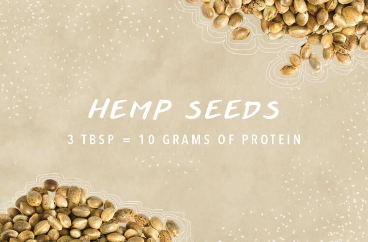 protein sources hemp seeds