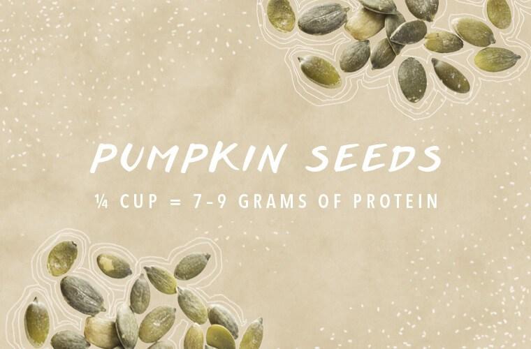 Protein sources pumpkin seeds
