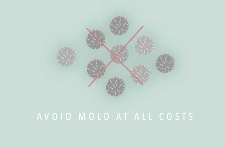 Biohacking tips for mold