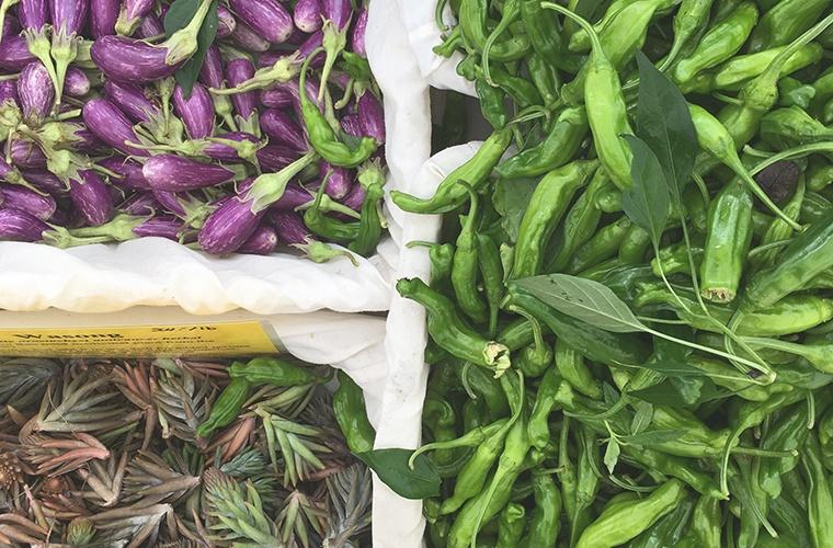Farmers-Market-HSHL