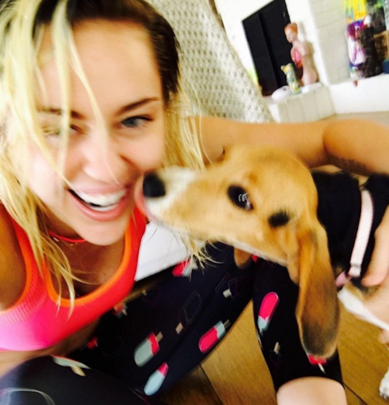 Thumbnail for The wellness-related reason for Miley Cyrus' absence at the VMAs