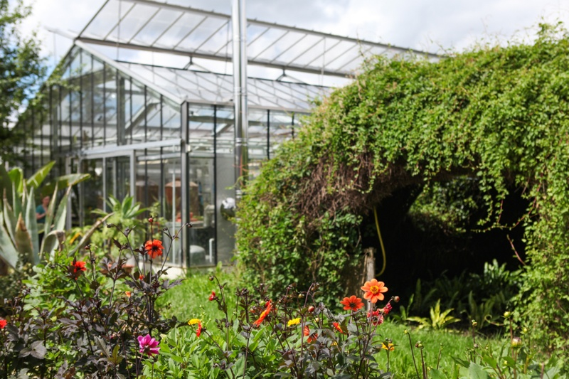 weleda-greenhouse-flowers