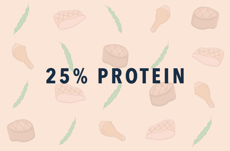 protein6