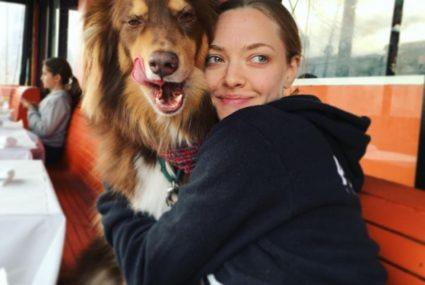 Amanda Seyfried speaks out about the stigma surrounding mental health