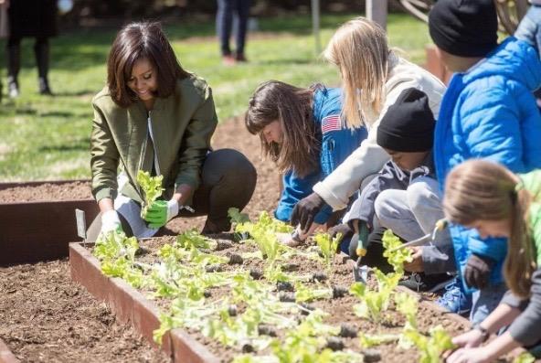 Michelle Obama wellness influence