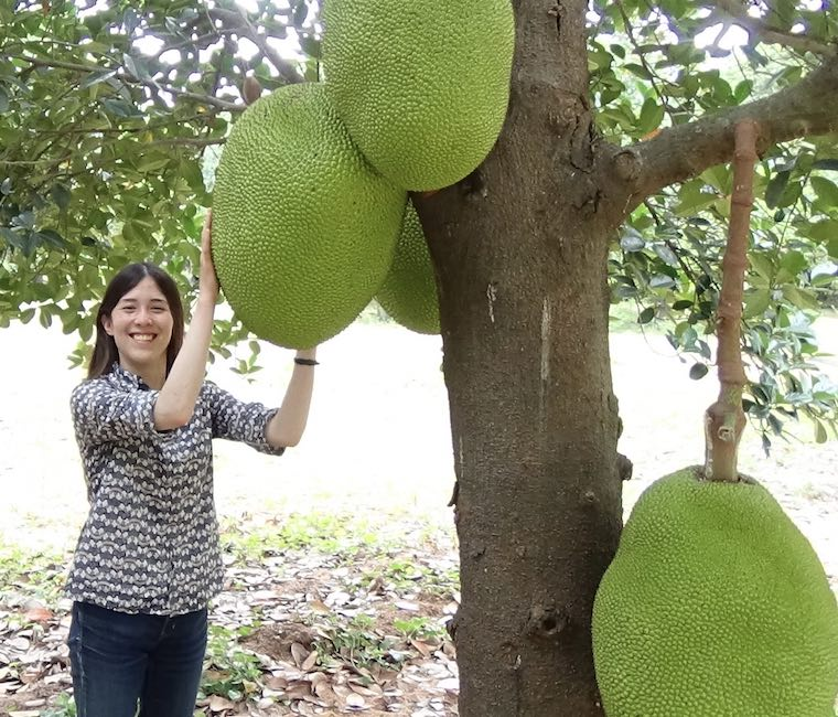 Annie Ryu, founder of The Jackfruit Company