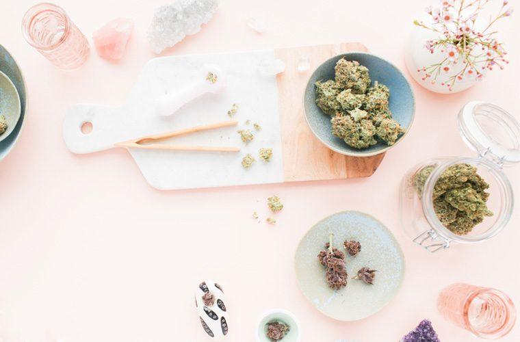 cannabis feminism marijuana plant medicine