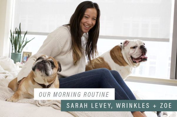 "Why this yoga queen thinks everyone should start their day with ""puppy cuddle time"""