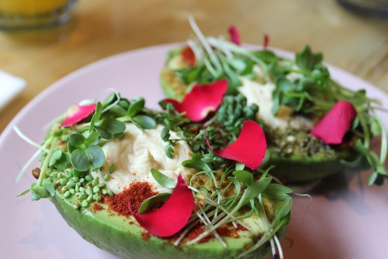 all avocado restaurant