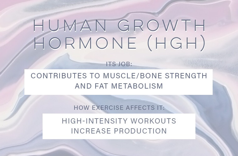exercise-affects-your-hormones-hgh