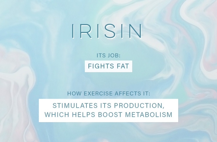 exercise-affects-your-hormones-irisin