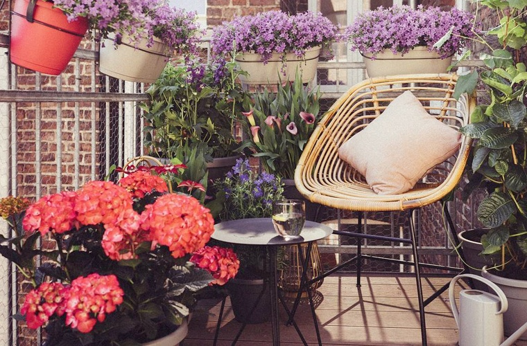 Thumbnail for You just need these 5 things to create a dreamy backyard oasis this summer
