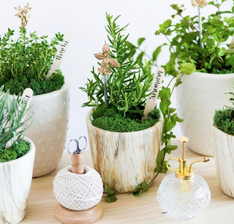 Herb Garden Design Small Space 28 Images How To Build