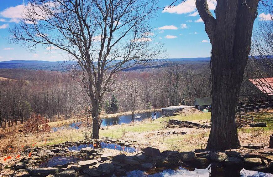 cheap wellness retreats under $1,000