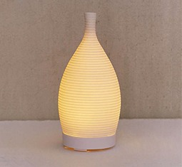 Thumbnail for 9 super-chic diffusers that double as decor