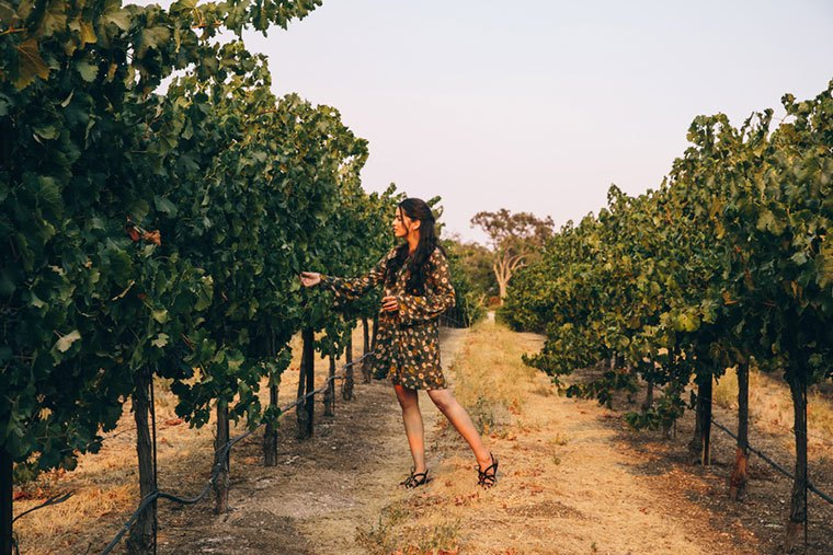 Thumbnail for 6 ways to have the perfect healthy day in Napa Valley