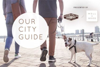 The healthy pet parent's guide to NYC's Upper West Side