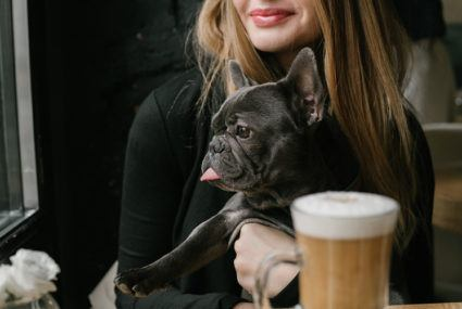 Cutest coffee break ever? NYC's first dog cafe is here