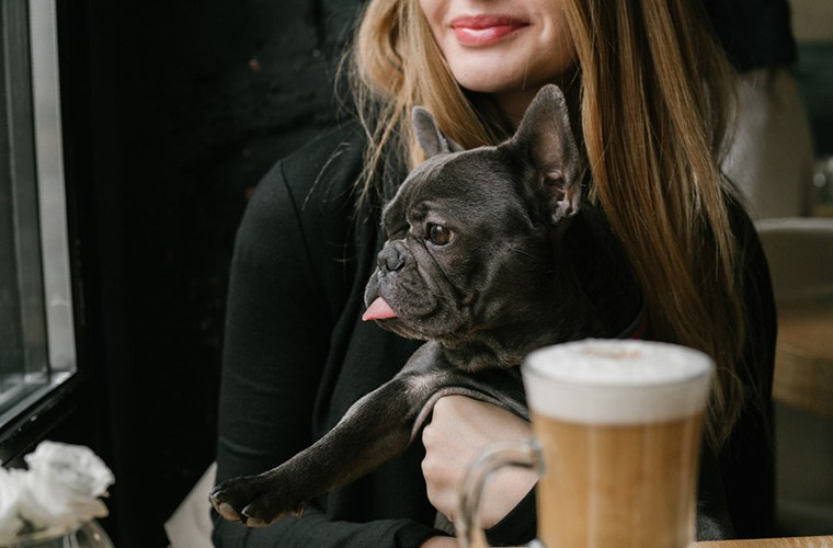 Thumbnail for Cutest coffee break ever? NYC's first dog cafe is here