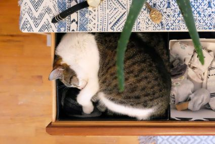 The right way to finally tackle your junk drawer (and *keep* it tidy)