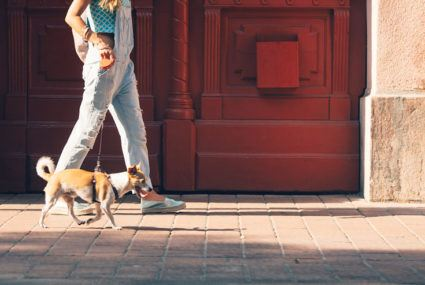 The scientific reason you love taking your dog on walks