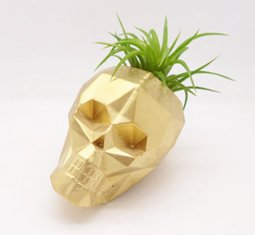 Thumbnail for 9 tiny desk planters that promote a mood-boosting work space