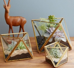 9 tiny desk planters that promote a mood-boosting work area