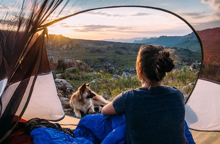 Thumbnail for This Start-up Wants to Turn the US Into a Camping Paradise